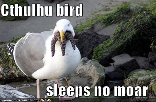 CTHULHU BIRD SLEEPS NO MOAR